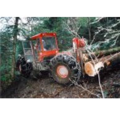 Madrier 75x225mm Longueur 5, 5m